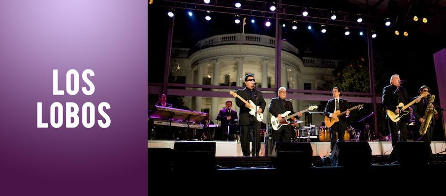 Los Lobos at Orange County Fair & Exposition Center - The Hangar